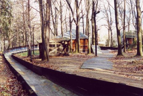 Droga w lesie - 1 part 6